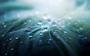 Water-Drops-Macro-575x359